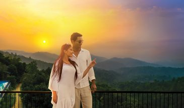 munnar-honeymoon