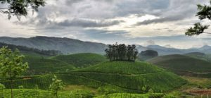 Munnar Tour packages in Kerala